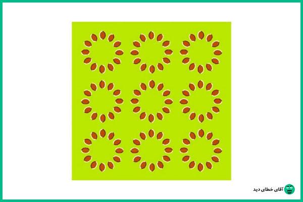 خطای دید دایره های متحرک