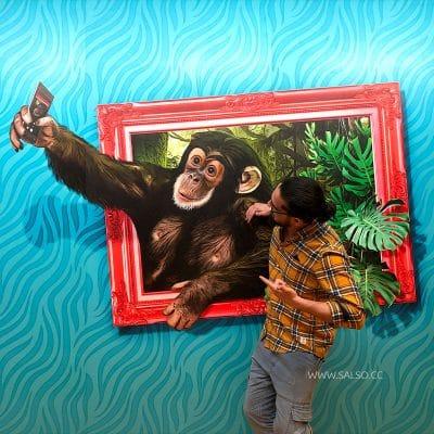 استیکر سه بعدی قاب عکس میمون